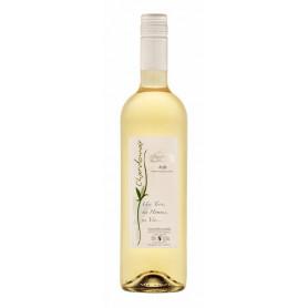Chardonnay - carton de 6 bouteilles